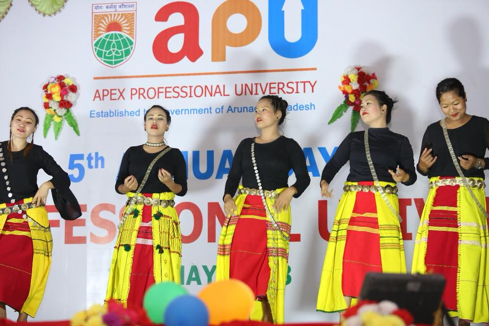 Admission Open for PhD and MPhil programmes August 2018 in Apex Professional University (APU)
